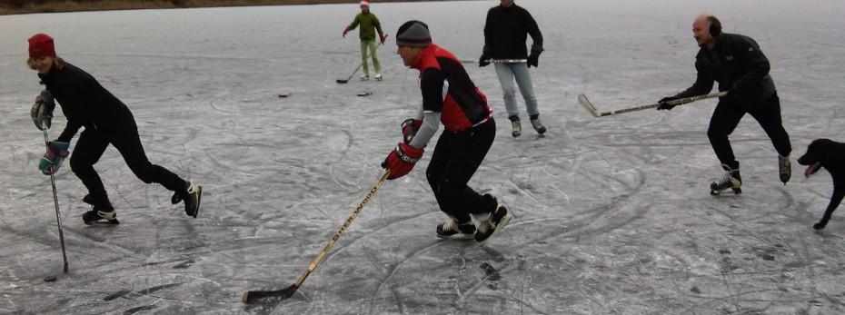 TN-Sports, uw adres  voor goedkope schaatsen